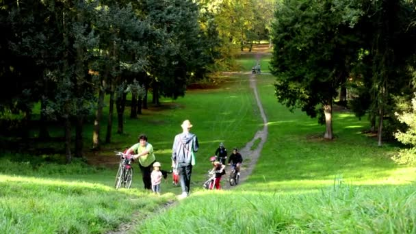 Lidi a lidé na kolech - cesta - podzimní park (lesní - stromy) - spadané listí - slunečno