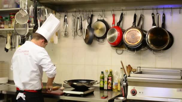 Chef cooks food in the kitchen (restaurant)