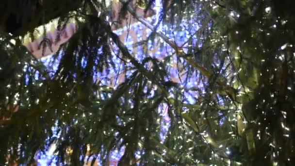 Vánoční strom v noci s Vánoční dekorace a osvětlení - budovy se světly v pozadí - noc