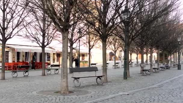 Městské náměstí s lidmi a strom alejí s Rámovky