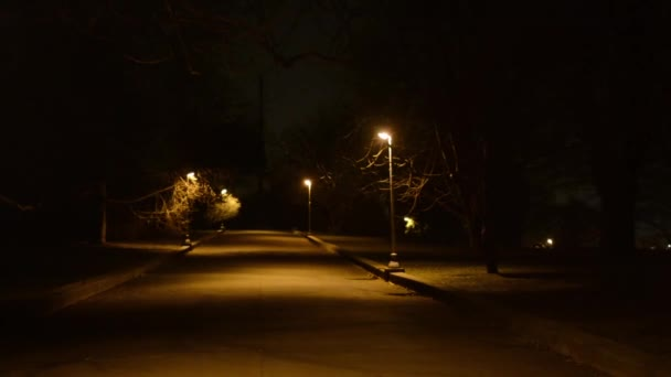 Nachtpark - niemand - Lampen