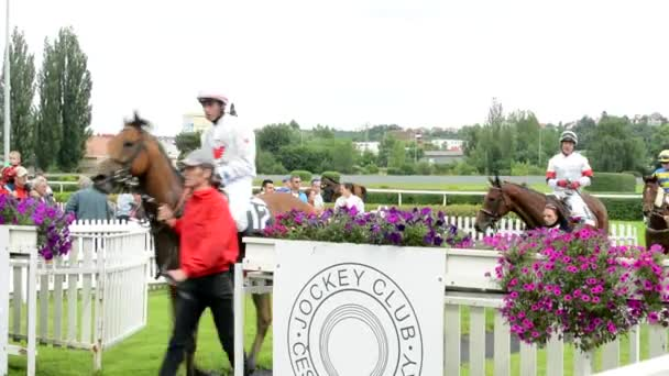 PRAGUE, CZECH REPUBLIC - JUNE 21, 2015: after horse races - before award ceremonies - horses with jockeys