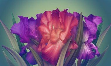 Fantasy Iris flowers