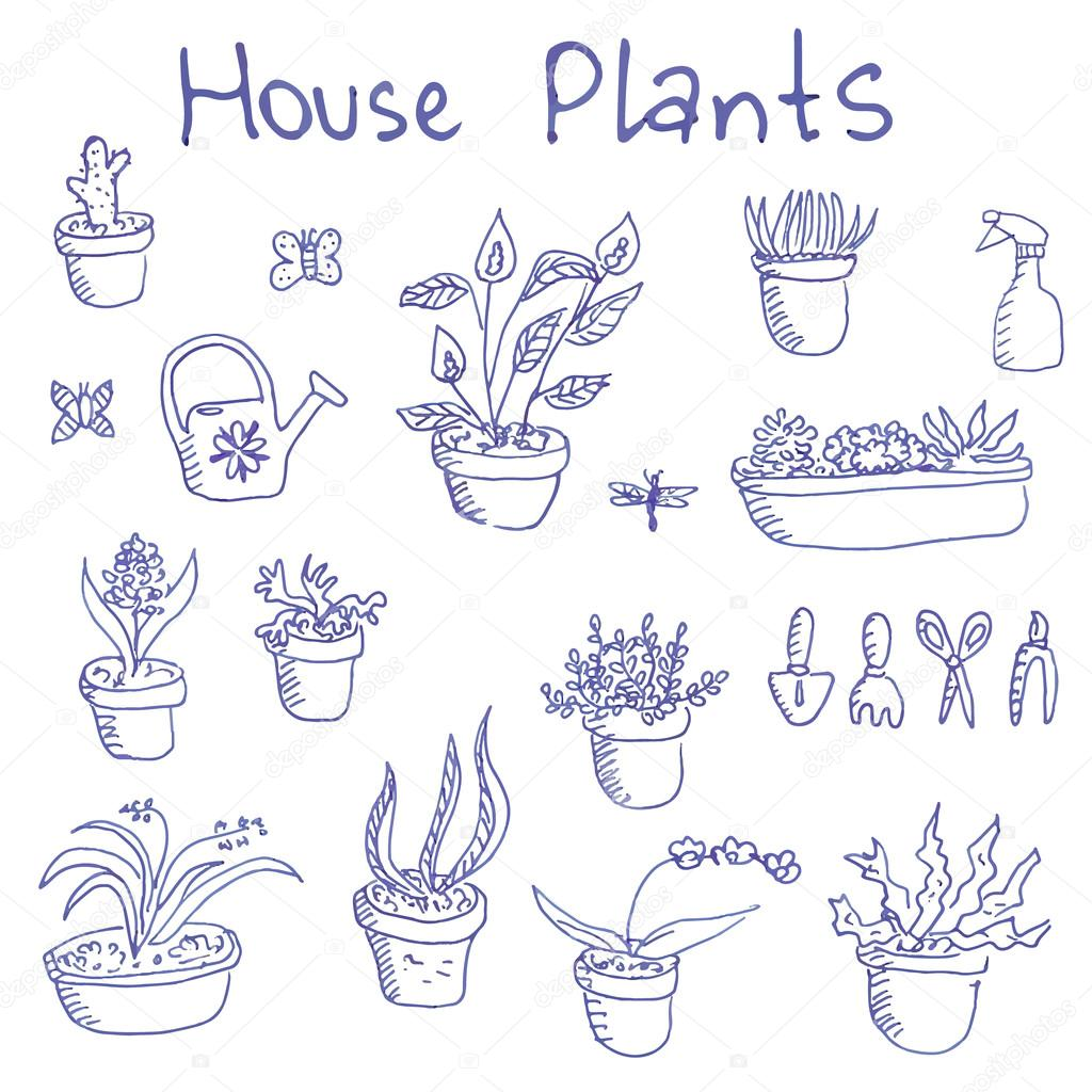 Big set of liner pen hand-drawn doodle outline houseplants and garden tools