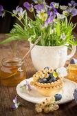 Fotografie Light fresh crunchy pastry tartlet of blueberries