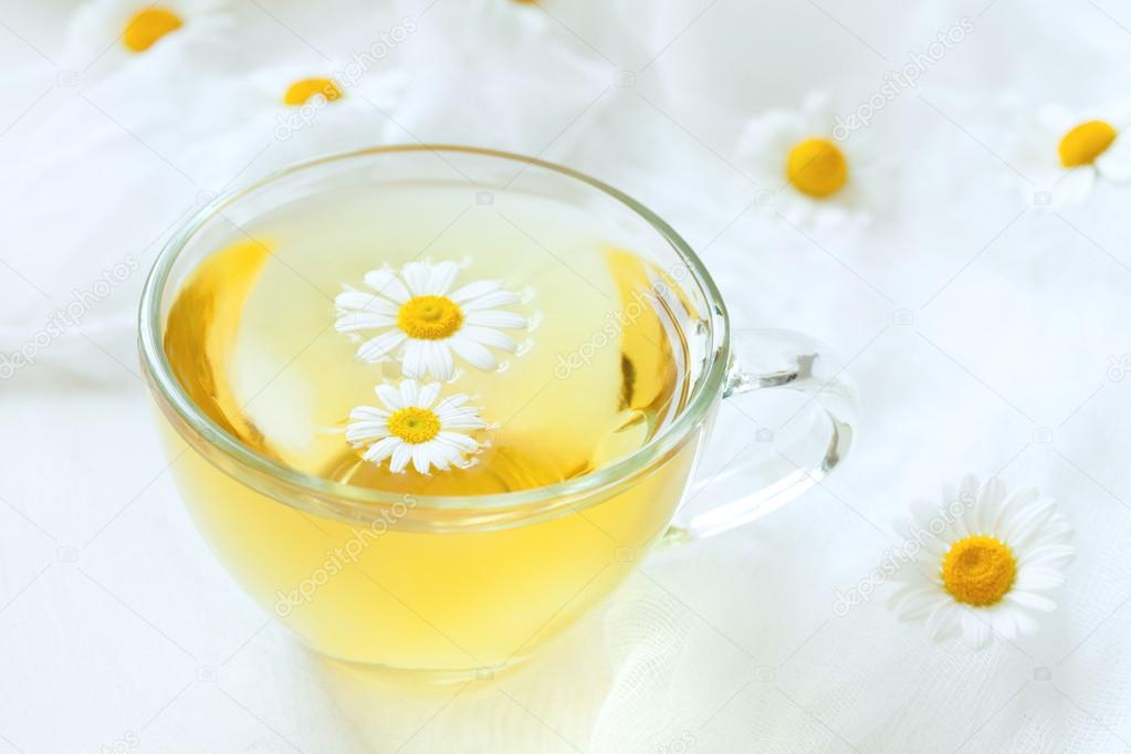 Transparent cup of healthy chamomile herbal tea with flowers on white rustic kitchen table background