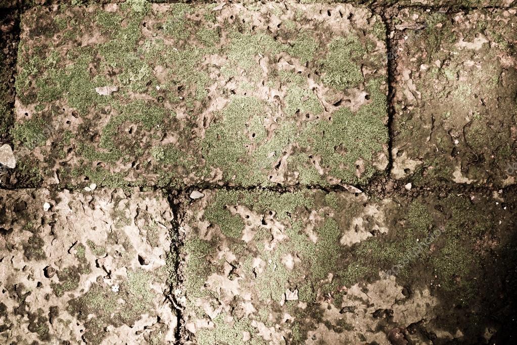 vintage filter :grunge stone brick block with grass moss on surf