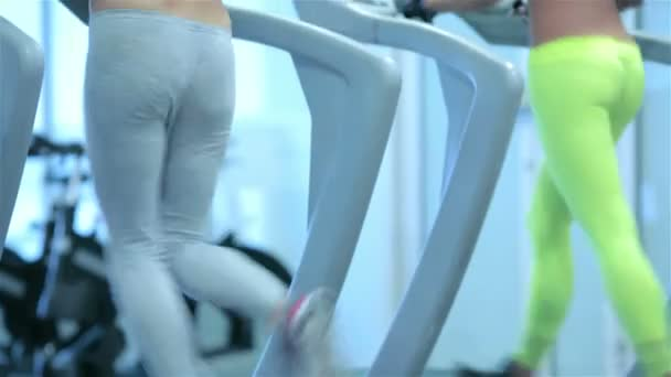Two sport and slender girl running on a treadmill