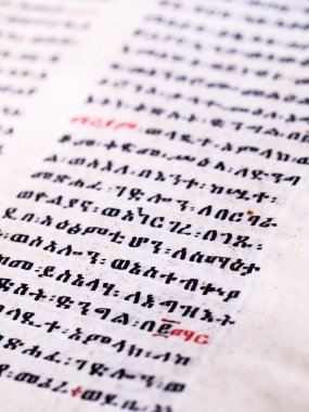 Text written in ge'ez  script   the traditional Ethiopian alphabet  in an Old Bible in the New Cathedral of Our Lady Mary of Zion in Axum, Ethiopia. stock vector