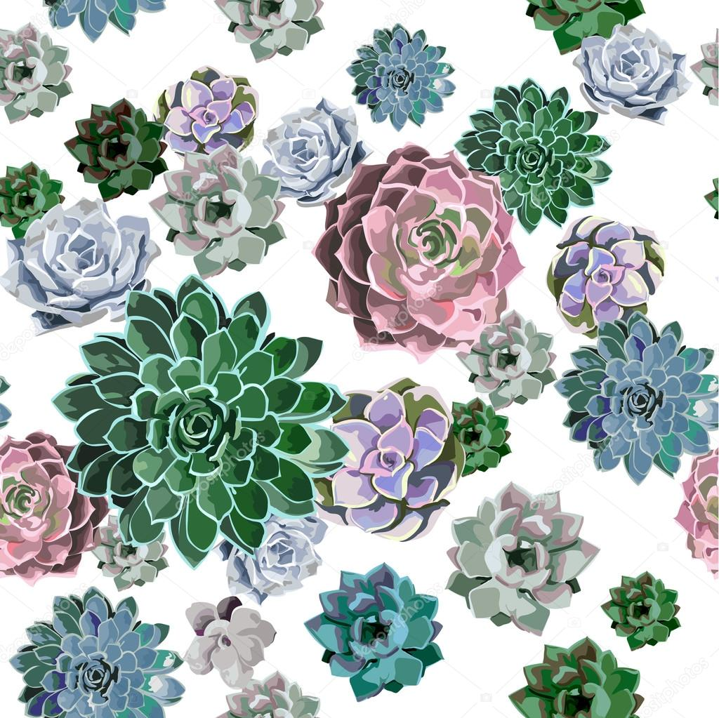 Seamless pattern of succulent plant on a white background.