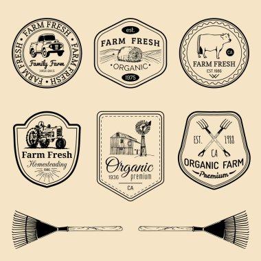 retro set of farm fresh logotypes