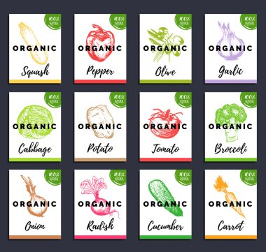 set of food vegetables cards
