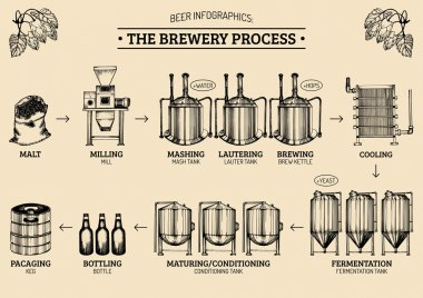 beer infographics with illustrations of brewery process.