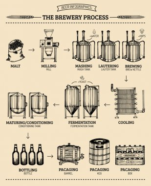 Brewery infographics design.