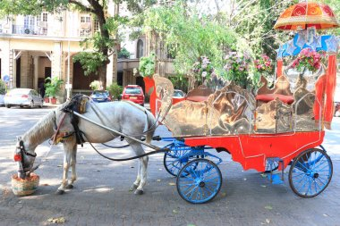 ancient horse drawn carriage india