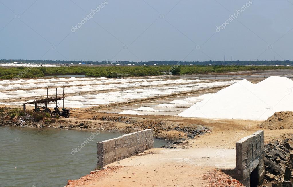 salt plains tamil nadu india