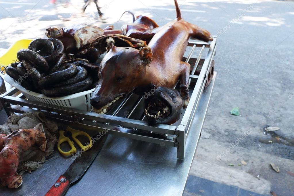 Cane Di Vietnam Arrosto Foto Stock C Awesomeaki 77118553