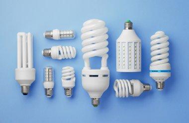 Collection of light bulbs
