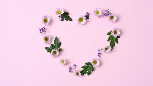 květinové aranžmá růžové květy chryzantémy a 1 žluté srdce ve tvaru gcrbera na růžové izolované pozadí s místem pro text