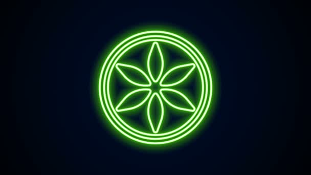Glowing neon line Leaf plant nature icon isolated on black background. Botanic garden beauty spa wellness health organic bio eco fresh leaves herbal. 4K Video motion graphic animation