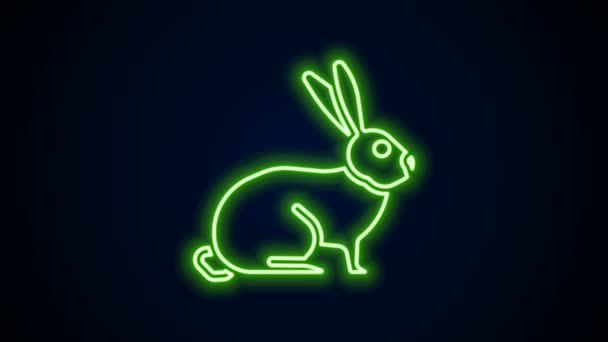 Leuchtende Leuchtschrift Rabbit Symbol isoliert auf schwarzem Hintergrund. 4K Video Motion Grafik Animation