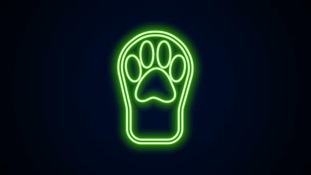Ragyogó neon vonal Paw print ikon elszigetelt fekete háttérrel. Kutya- vagy macskamancs lenyomat. Állati nyom. 4K Videó mozgás grafikus animáció