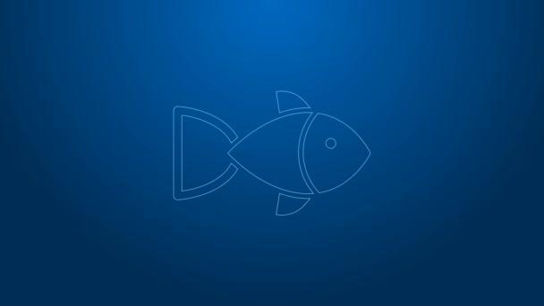 Fehér vonal Halak ikon elszigetelt kék háttérrel. 4K Videó mozgás grafikus animáció