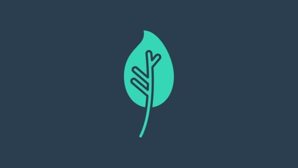 Türkiz levél ikon elszigetelt kék alapon. Levelek. Friss természetes termék szimbólum. 4K Videó mozgás grafikus animáció