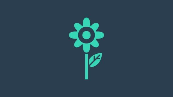 Türkiz Virág ikon elszigetelt kék alapon. 4K Videó mozgás grafikus animáció