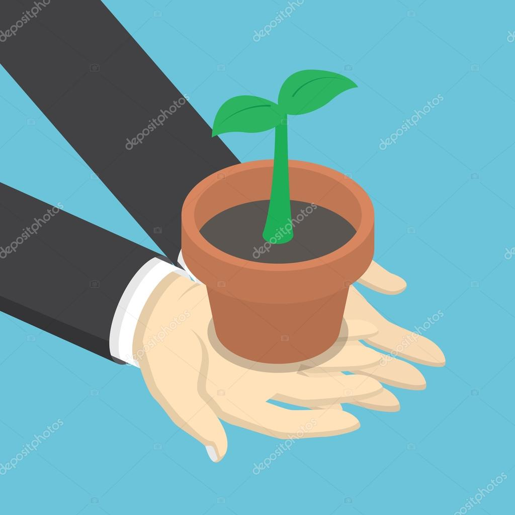 Isometric businessman holding sprout or little plant in his hand