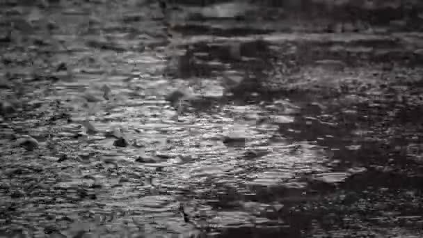 Starkregen mit großen Tropfen