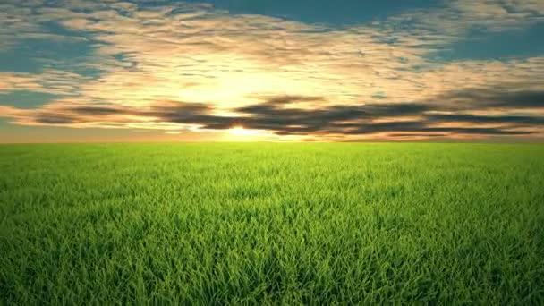Letu nad cloudscape slunce, trávu,