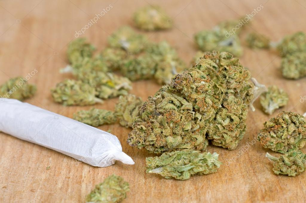 Dry marijuana buds