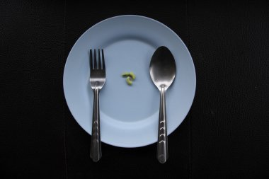 Concept of extreme dieting. Almost empty dish. Only few beans on