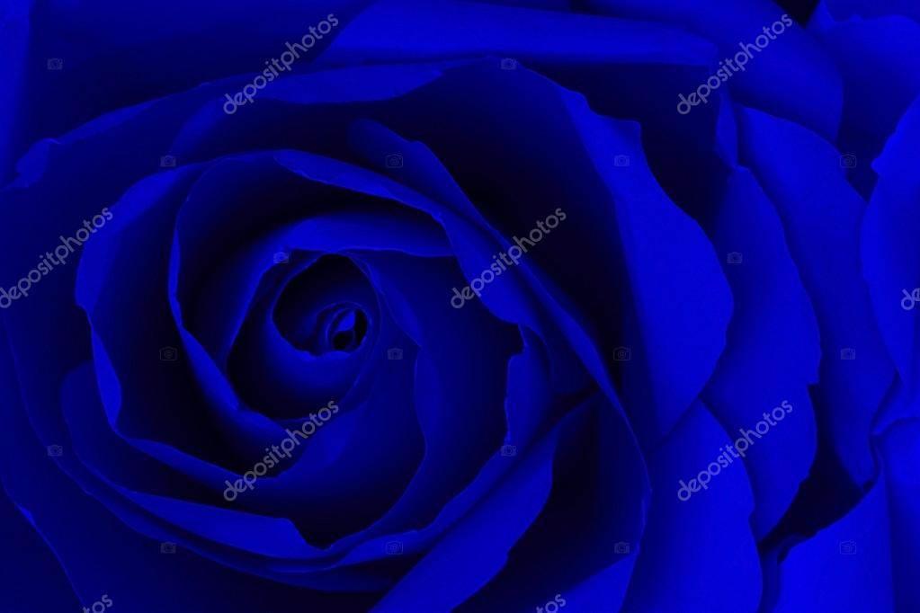 Close up of navy blue rose make from paper,  abstract background