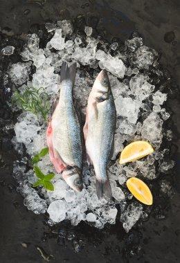 Raw seabass with lemon