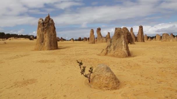 vrcholy cervantes západní Austrálie