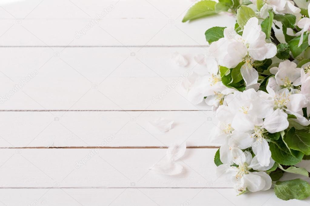 Fundo De Madeira Branco Com Flores Brancas Ma 231 227 E Flores