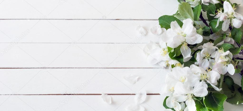 Fondo De Madera Vintage Con Flores Blancas Manzana Y: Panoramic White Wooden Background With White Flowers