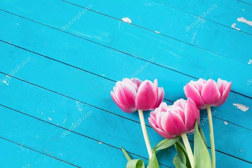 Flores De Color Rosa Sobre Fondo Azul De Madera