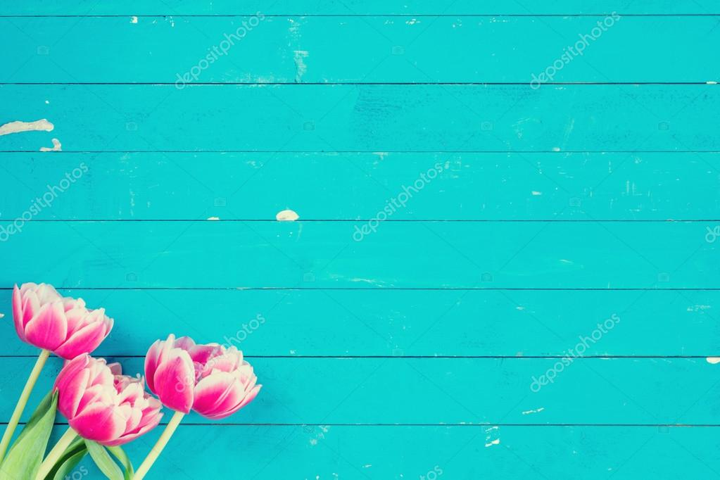 Flowers on turquoise background floral card stock photo pink flowers summer card bouquet of pink flowers on bright blue wooden background copy space for text photo by vladislavnosick mightylinksfo