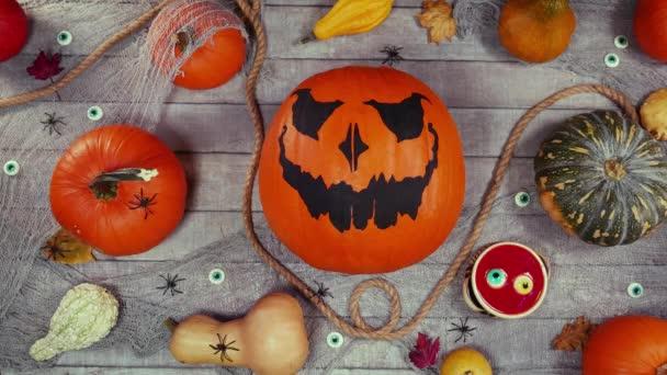 Tökfej őszi halloween táj egy fa íróasztalon. Top view, asztali felső mozgás animáció Jack o lámpás és pókok között sétáló sütőtök. Kísérteties halloween jelenet