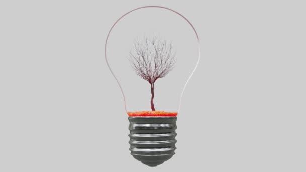 Baum wächst in einer Glühbirne. Baum im Wandel der Jahreszeiten. Grünes Energiekonzept. 3D-Rendering.