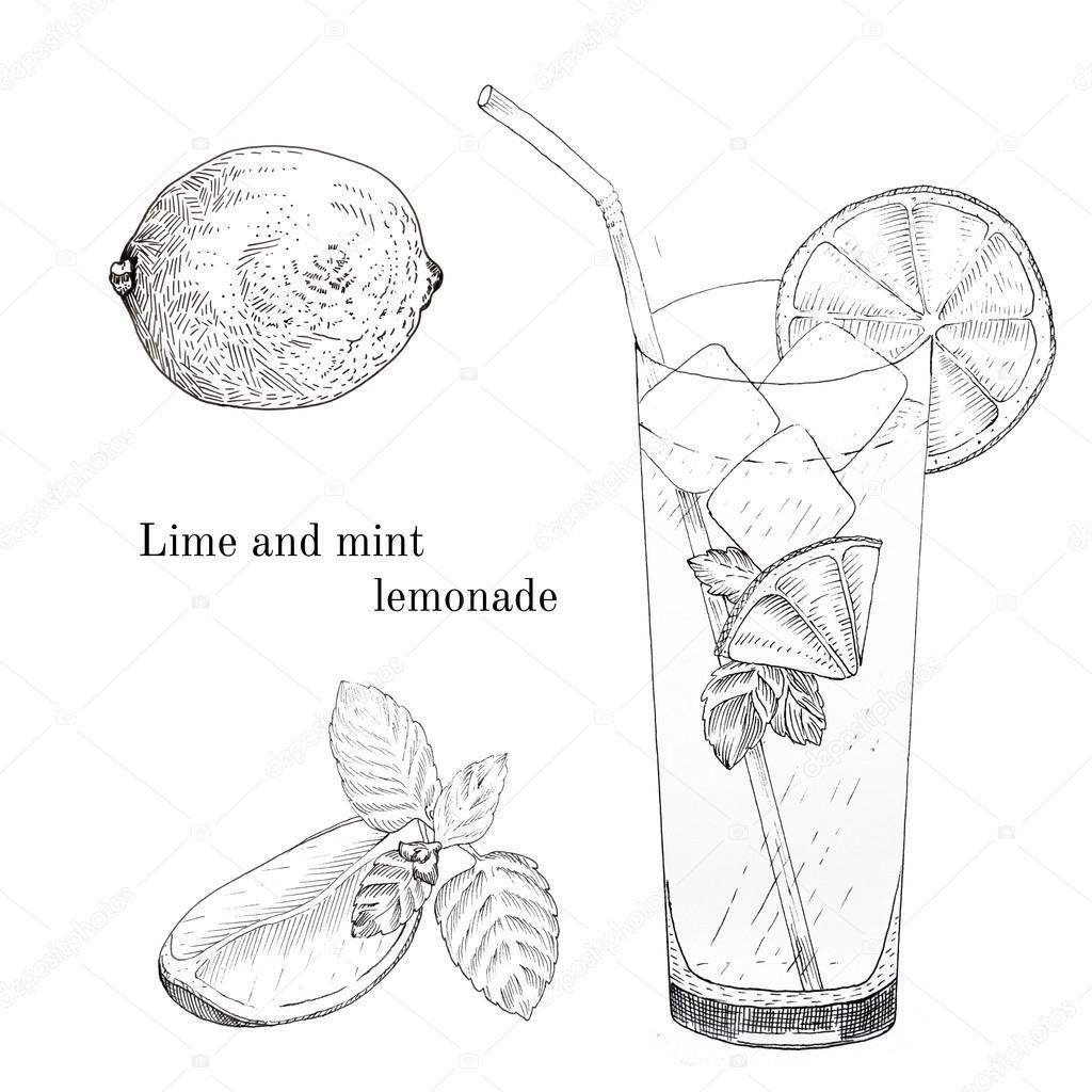 Lime and mint lemonade ink sketch set