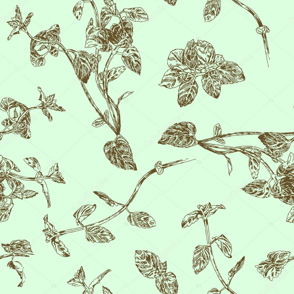Seamless floral pattern with peppermint sprigs