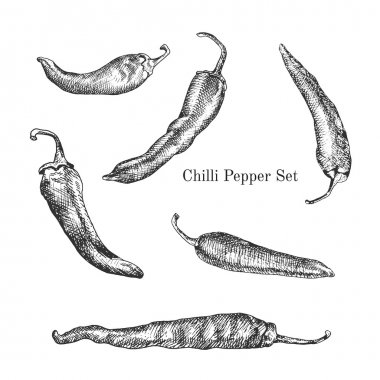 Chilli peppers ink sketches set