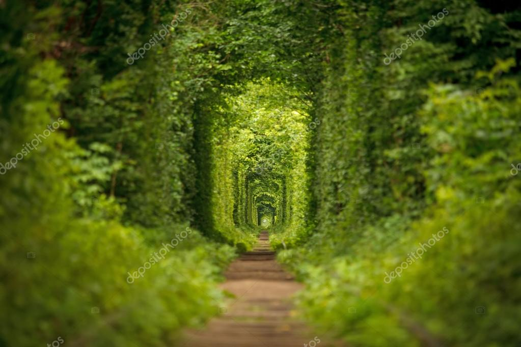 long tunnel of love in ukraine