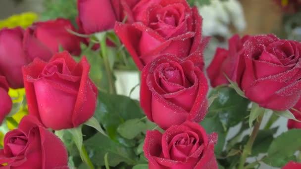 Virágbolt, gyönyörű frissen vágott kis vízcseppek Rózsa
