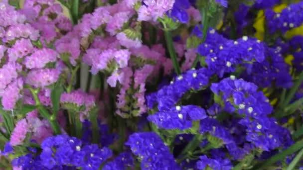 Květinářství, různé krásné květiny