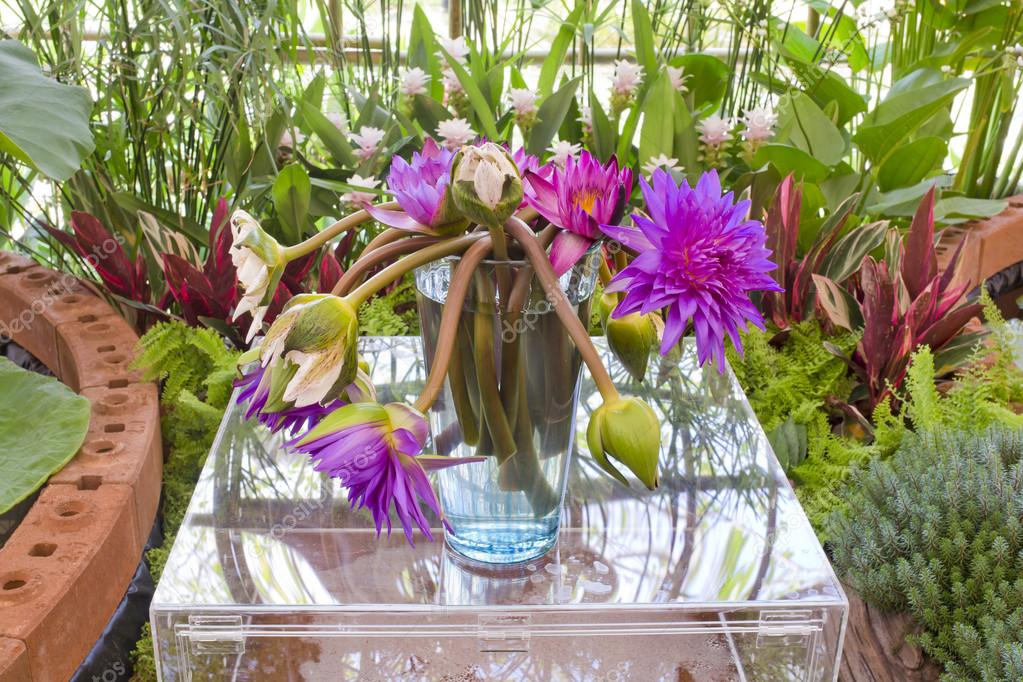 Floristry Pink And Purple Lotus Flowers In Glass Vase Stock Photo